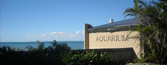 Reefworld Aquarium