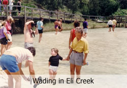 Wading in Eli Creek