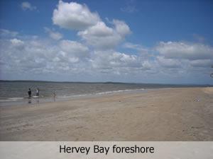 Safe swimming at Hervey Bay