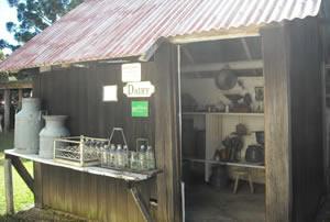 Museum dairy