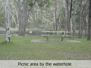 Wongi Waterhole